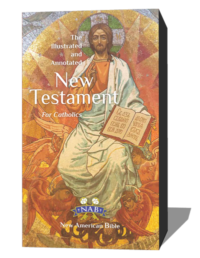 New Testament for the Renewal
