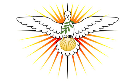 CNSC-USA: CHARIS National Service of Communion USA